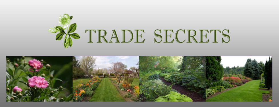 The Gardens of Trade Secrets